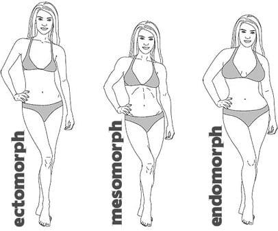 Determine Your Bodytype