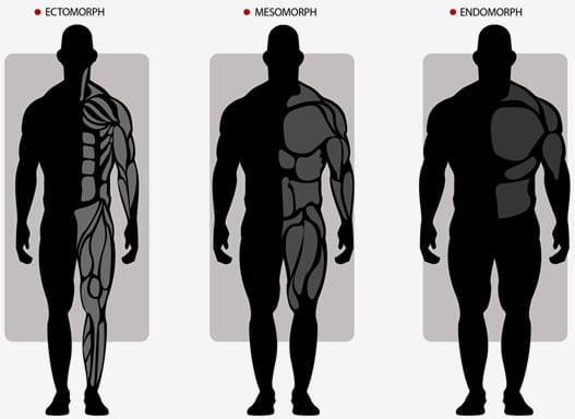 Bodytype Diet - Cyberflexing