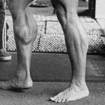 Arnold's Calf Input