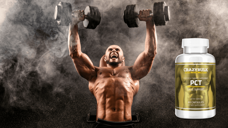 Natural Post Cycle Therapy Supplement - Maximum Recovery